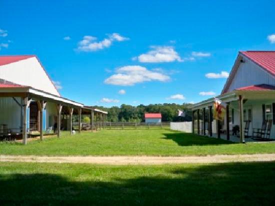 holly-ridge-farm-equestrian