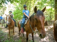 Holly Ridge Farm, Trail riding